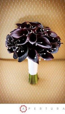 Fotos de ramos Black-10