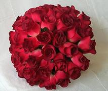 Fotos de ramos Redbud10