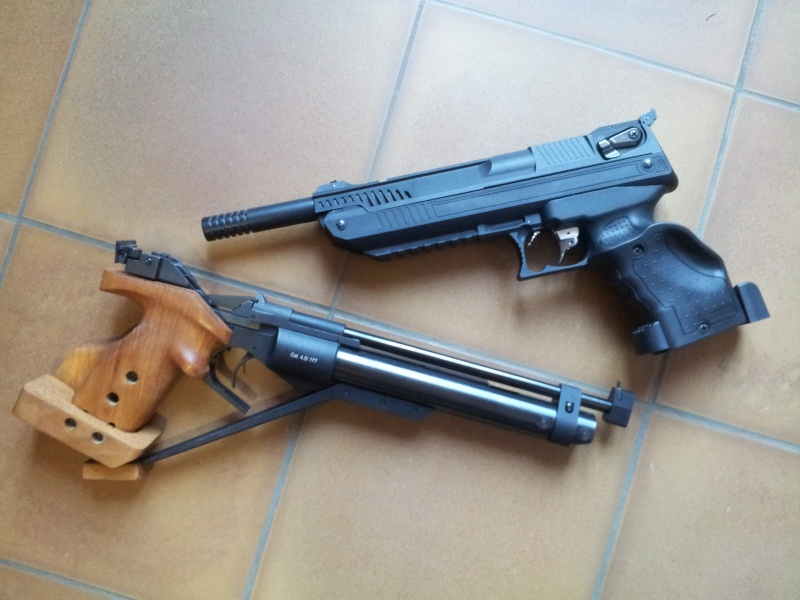 Choix d'un pistolet - Page 2 20130214