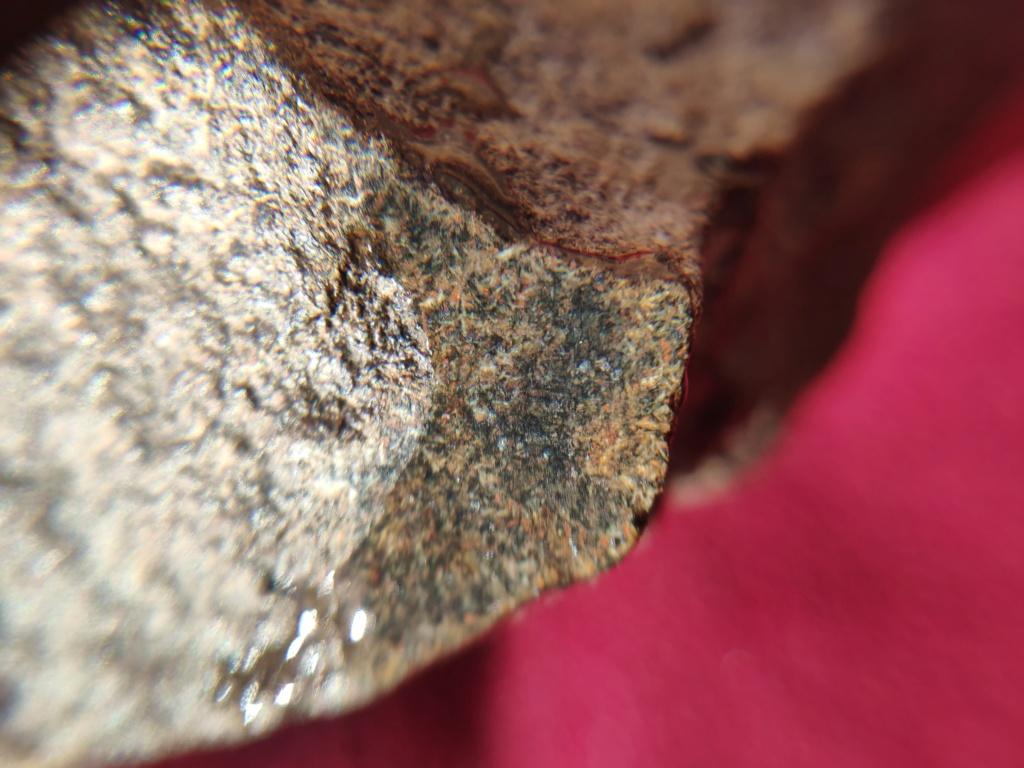 météorite achondrite nwa xx Img_2030