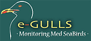 Encuentros y KDD / Organising an outing or meeting? Advertise it here. E-gull10