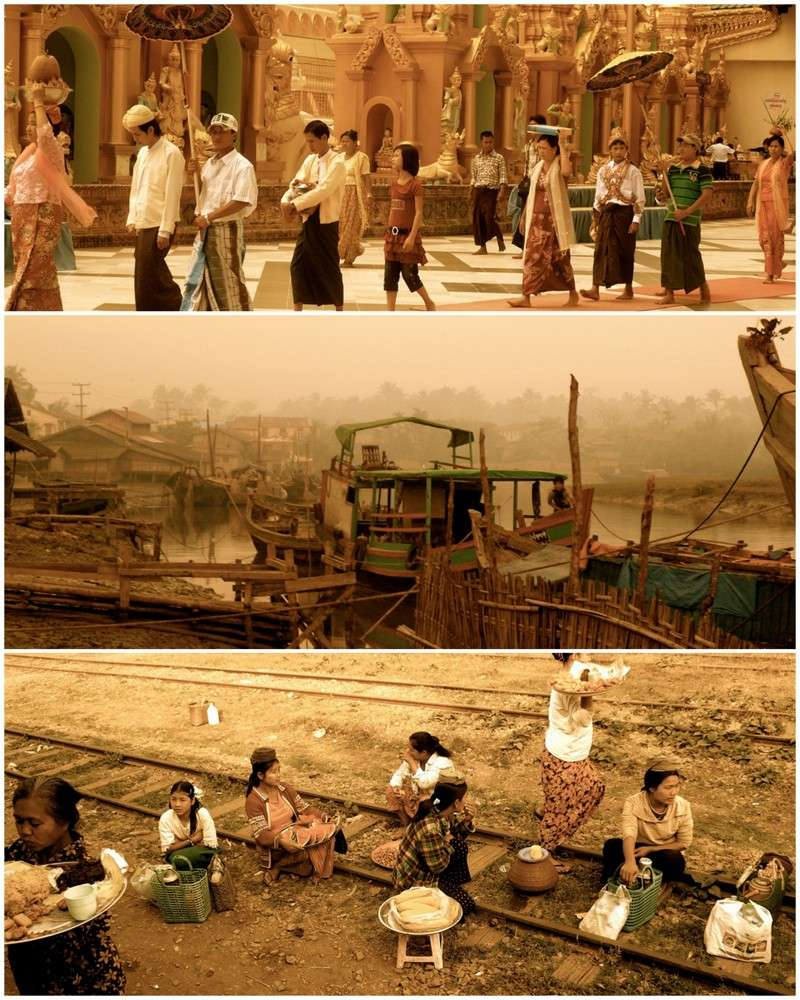 L'esprit birman - Page 2 Birman10