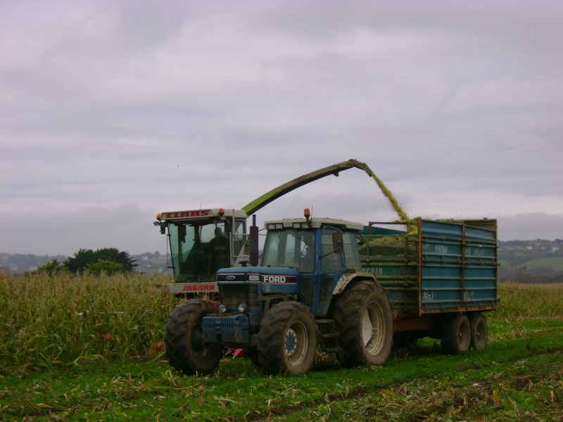Ensilage de maïs 2008 - Page 6 Dsc04916