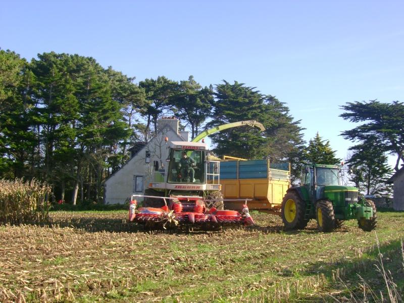 Ensilage de maïs 2008 - Page 6 Dsc05012