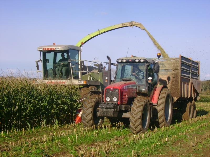 Ensilage de maïs 2008 - Page 6 Dsc05013