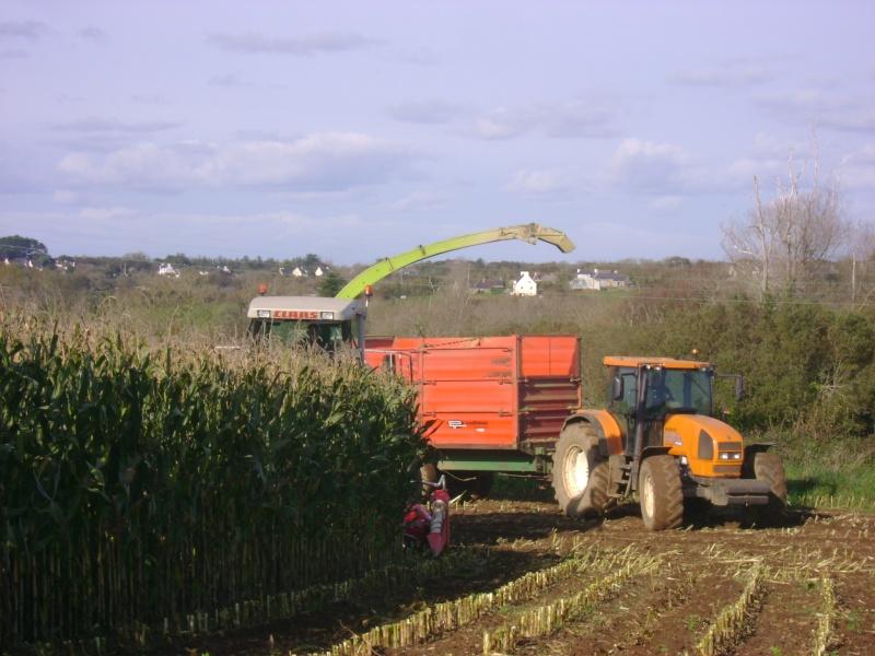 Ensilage de maïs 2008 - Page 6 Dsc05020