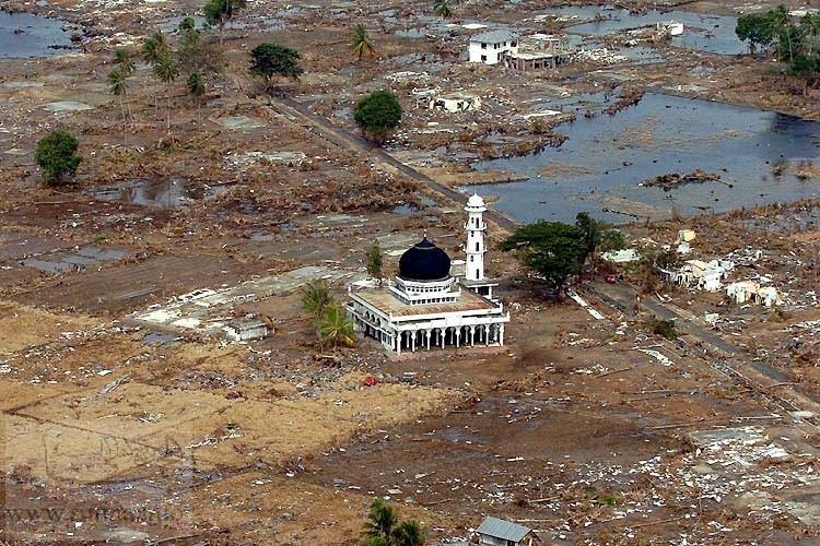 """مشاهد حقيقية عن كارثة  """" تسونامي"""" عبر فيلم وثائقي Image010"""