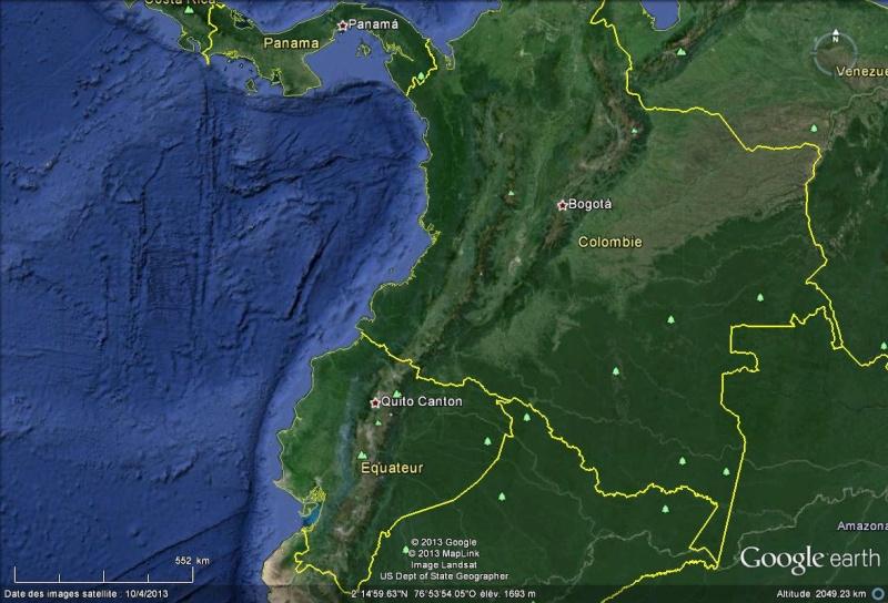 L'olinguito, un nouveau mammifère carnivore découvert dans les Andes Colomb10
