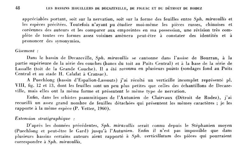 Calamites Schlotheim ,1820.  Annularia sternberg , 1822 .  P_48_l10