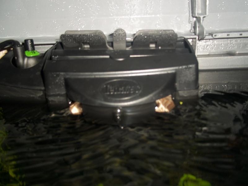 Nouveau Aquarium 130L et 60L spé crevettes 100_0611