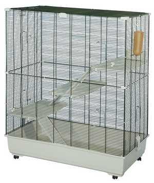 La cage SAMO Samo_s10