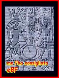 Bike Fun point - Pagina 2 Egypt10