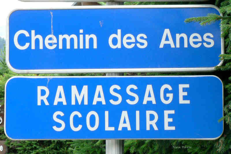 Images insolites Chemin10
