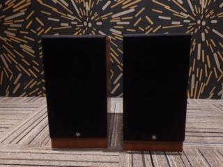 DLS R-60 Bookshelf Speaker (Used) 2019-010