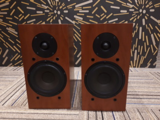 DLS R-60 Bookshelf Speaker (Used) 2019-012