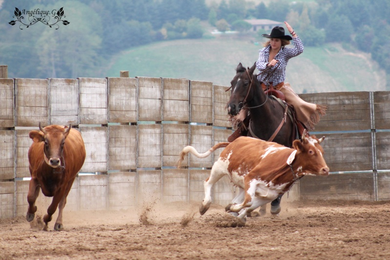 Photo concours d'Equitation Western Img_0410