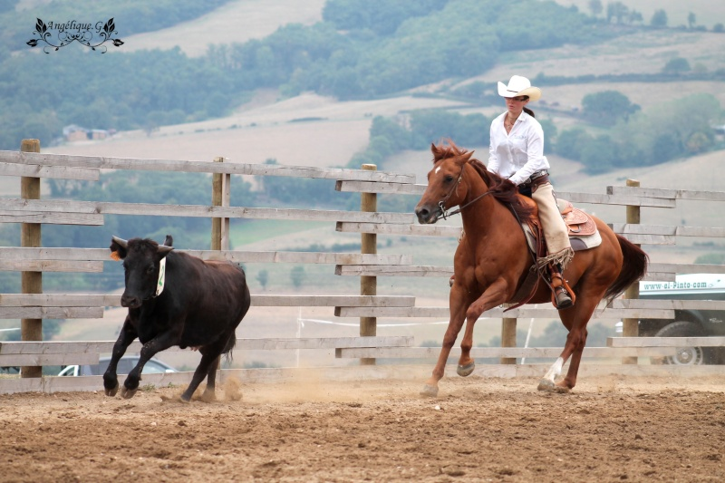 Photo concours d'Equitation Western Img_0411