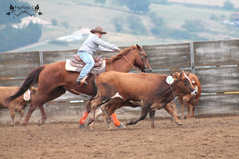Photo concours d'Equitation Western Img_0412
