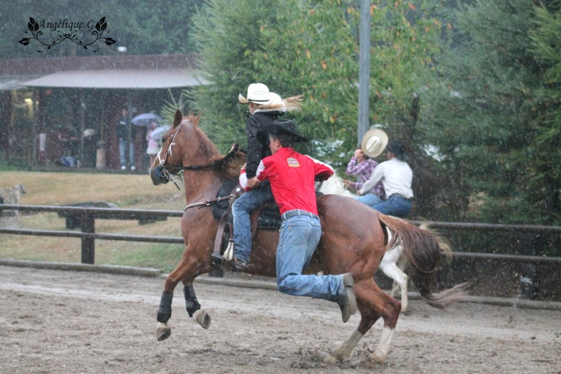 Photo concours d'Equitation Western Img_0610
