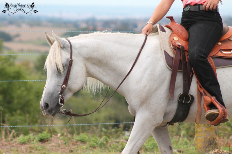 Photo concours d'Equitation Western Img_0710