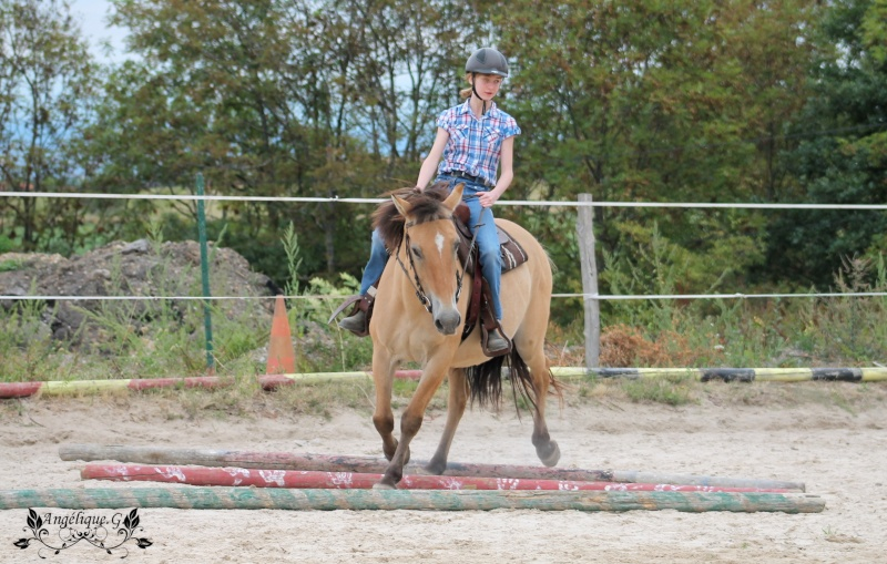 Photo concours d'Equitation Western Img_0910