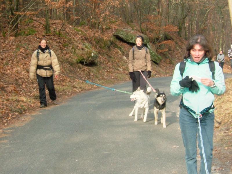 Randonnée et pic nic en foret de fontainebleau le 30 Janvier 2011 - Page 5 Dscf0230