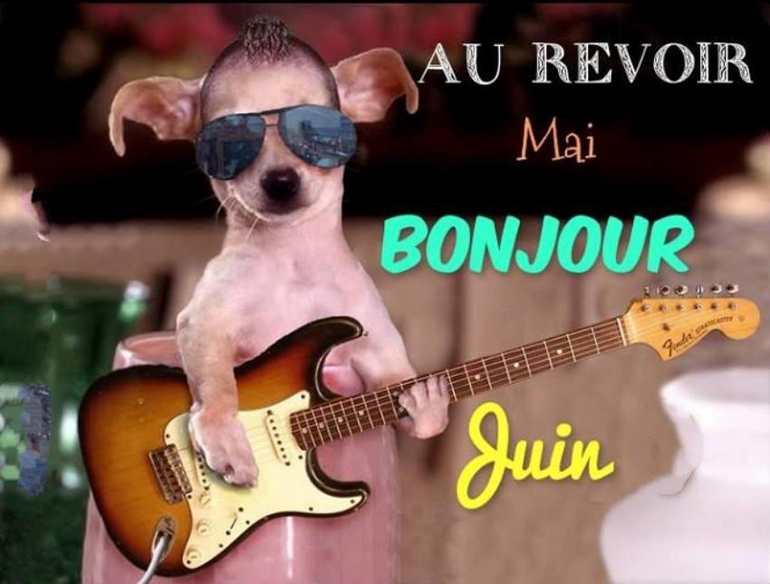 Les bonjours et contacts jounaliers du Mois de Juin 2019 01061910