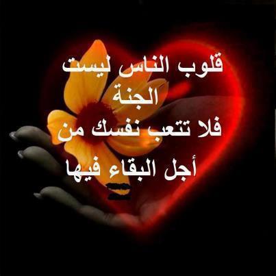 لا تغــــــــــــــــــــــــــــــــــــــــــــرق 64116_11
