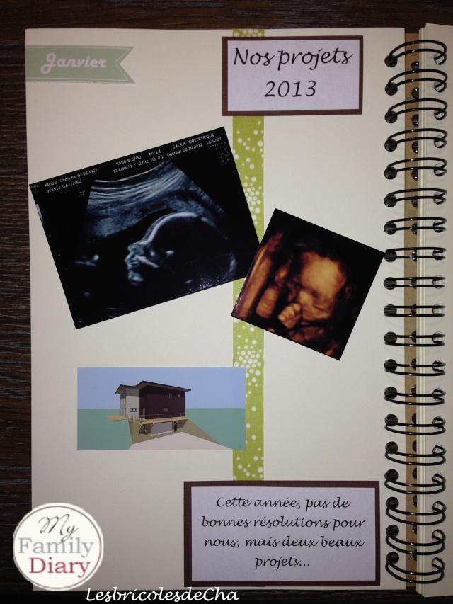 My Family Diary - LesbricolesdeCha - MAJ le 23/04 P210