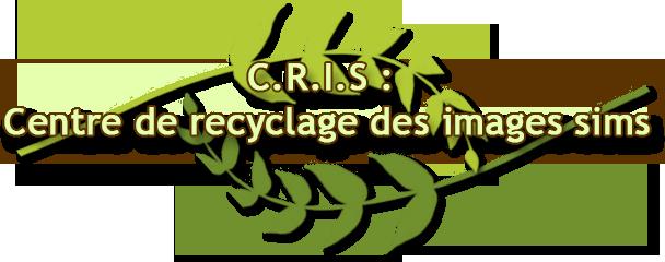 [Clos] C.R.I.S : Centre de recyclage des images sims  - Page 2 Title10