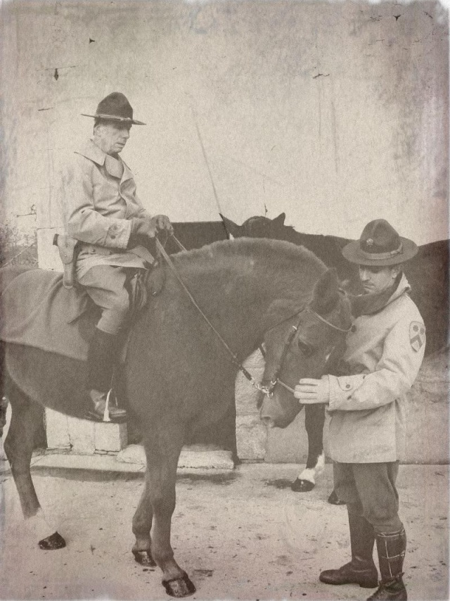Cavalry US 5y3o1x11