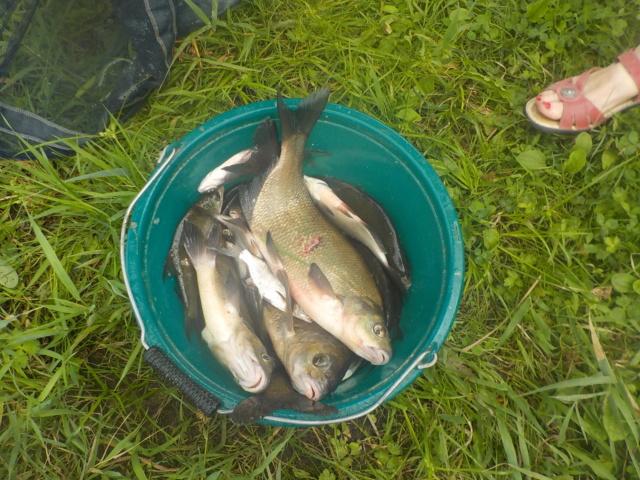 Jeudi 16 août 2018 pêche et grillades au Migron. Dscn1318