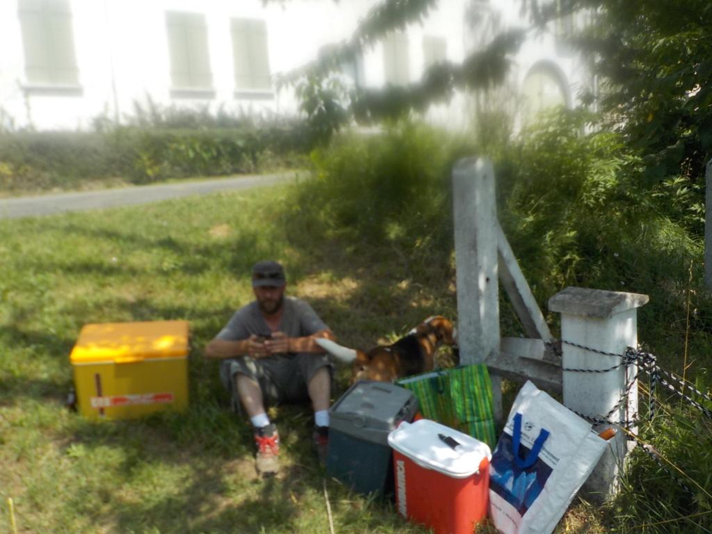 JEUDI 5 & SAMEDI 7 JUILLET  2018 /SORTIE COUP OU MULTIPÊCHE - Page 2 Port_d17