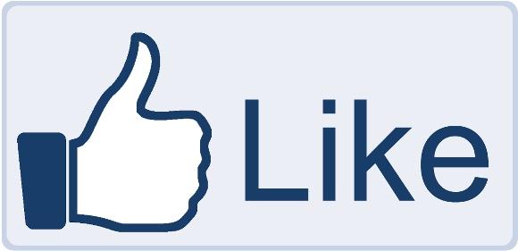 Cinal n'a pas ... Facebo10