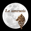 Les badges : Mode d'emploi   Sourno10