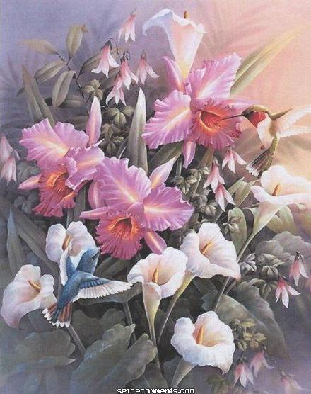 Belles Images 0047811