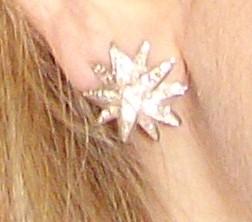 les bijoux de l'impératrice Sissi Bild1410