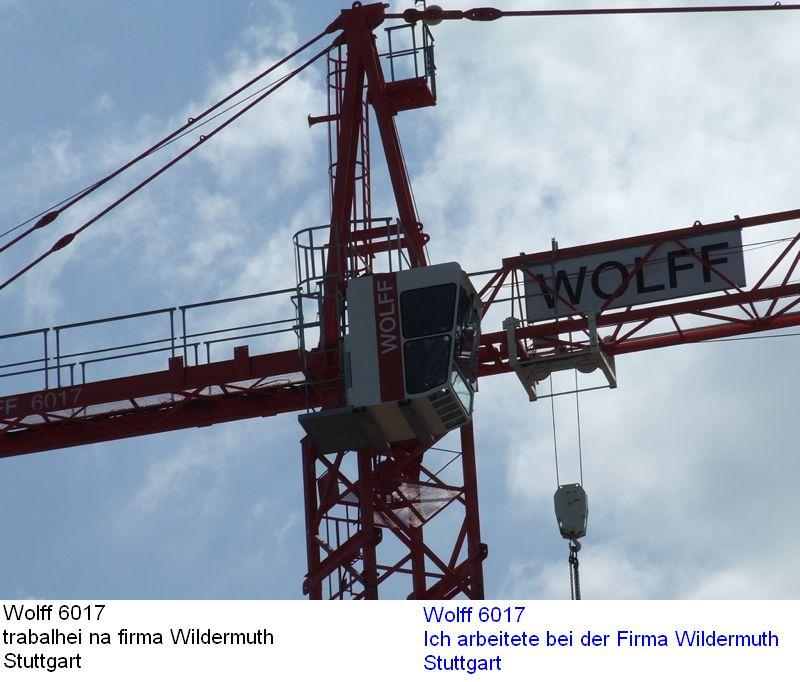Wildermuth 6017-w10