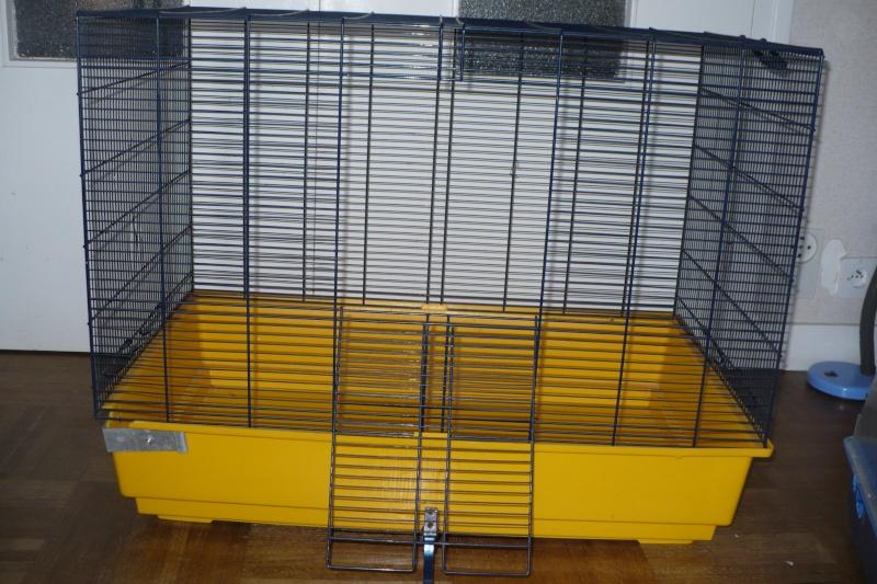 Vends Cage Freddy 2 (29, Quimper) P1050010