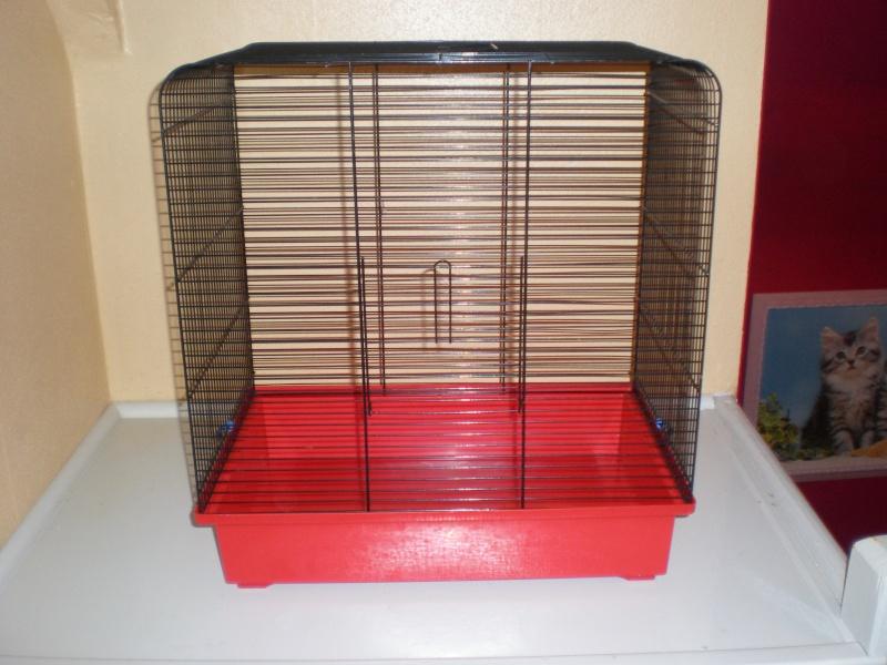 Vends petite cage (59) P2030010