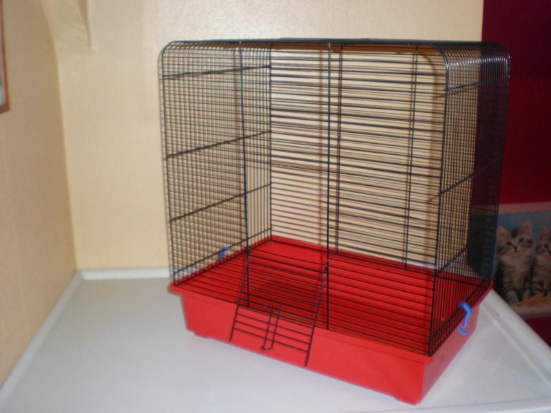 Vends petite cage (59) P2030012