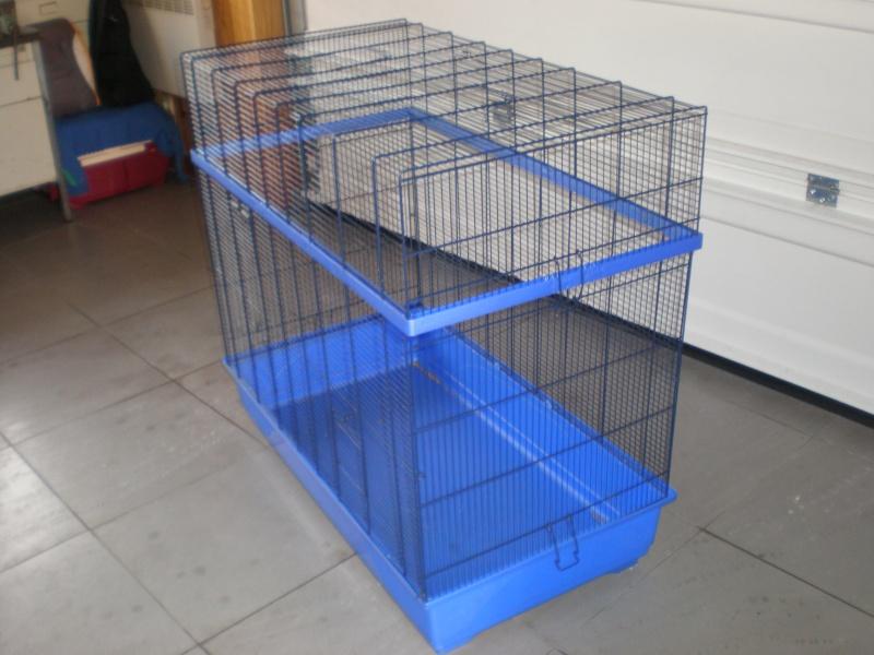 Vends cage Imac prince bleu (59) P2170011