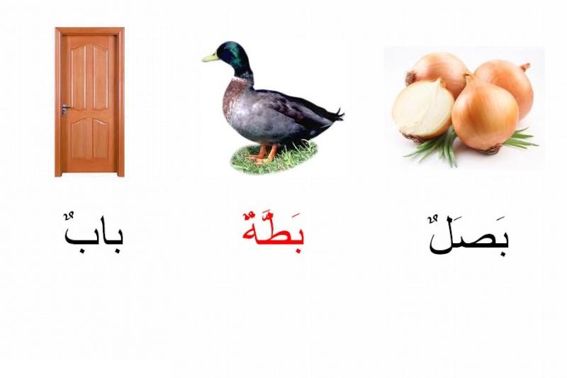 **الحروف   ***الحروف Ooouo10