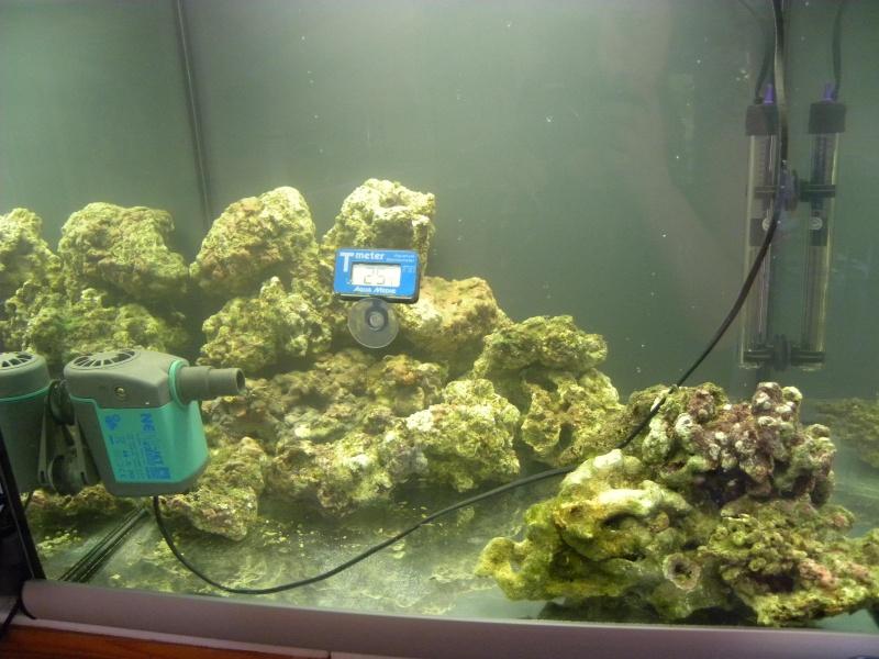 le cube de Steph Aquari14