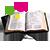 Paroles et méditations du 31 janvier :« annonce-leur tout ce que le Seigneur a fait pour toi ' »  310