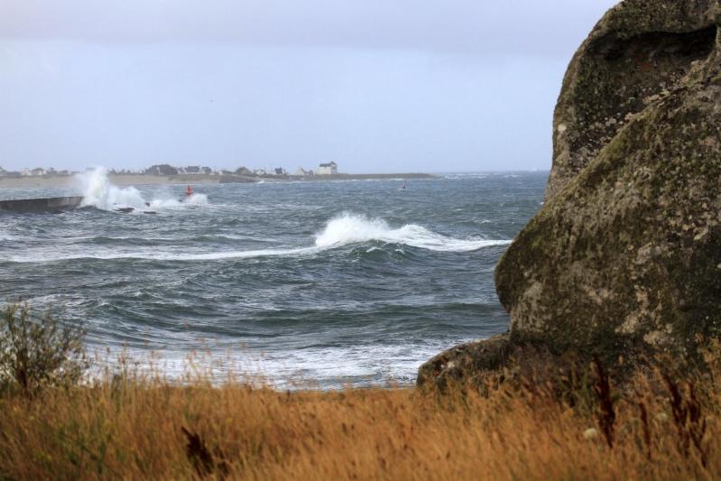 Bretagne ( fil ouvert ) Img_5311