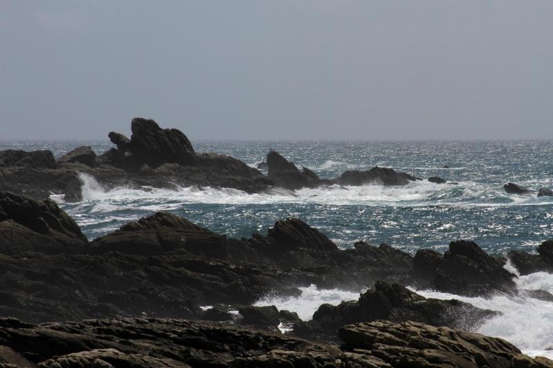 Bretagne ( fil ouvert ) Img_5511