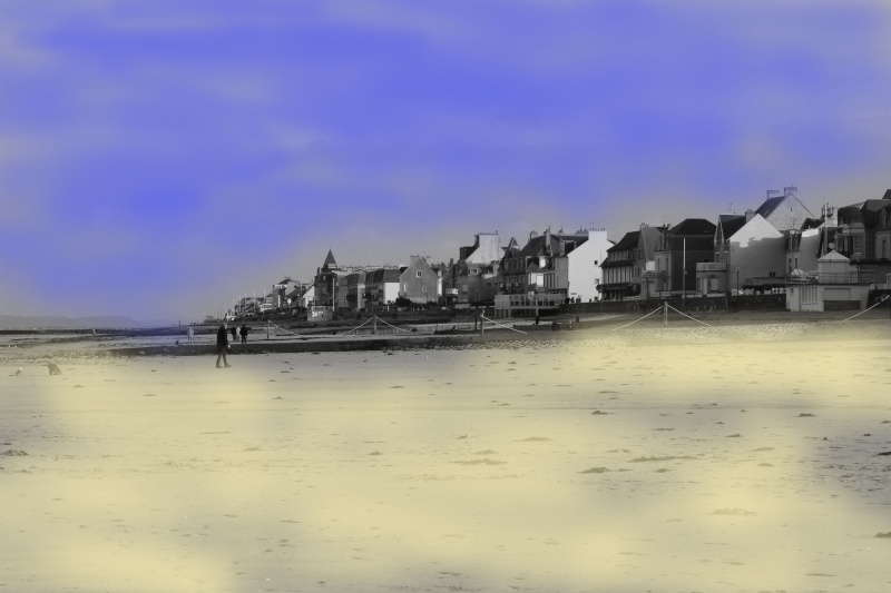 Balade d'hiver à la mer..... gla,gla !!! Img_7812