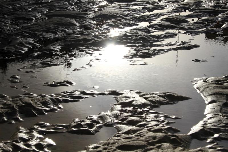 Balade d'hiver à la mer..... gla,gla !!! Img_7910