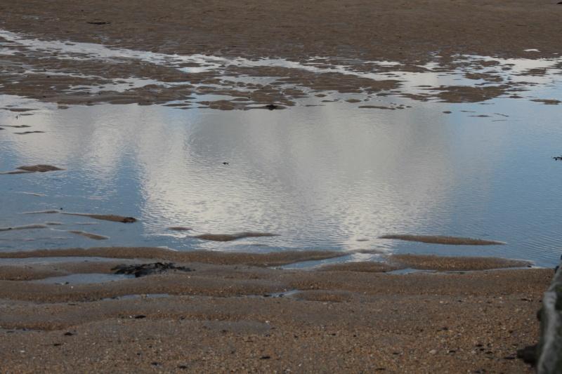 Balade d'hiver à la mer..... gla,gla !!! Img_8011